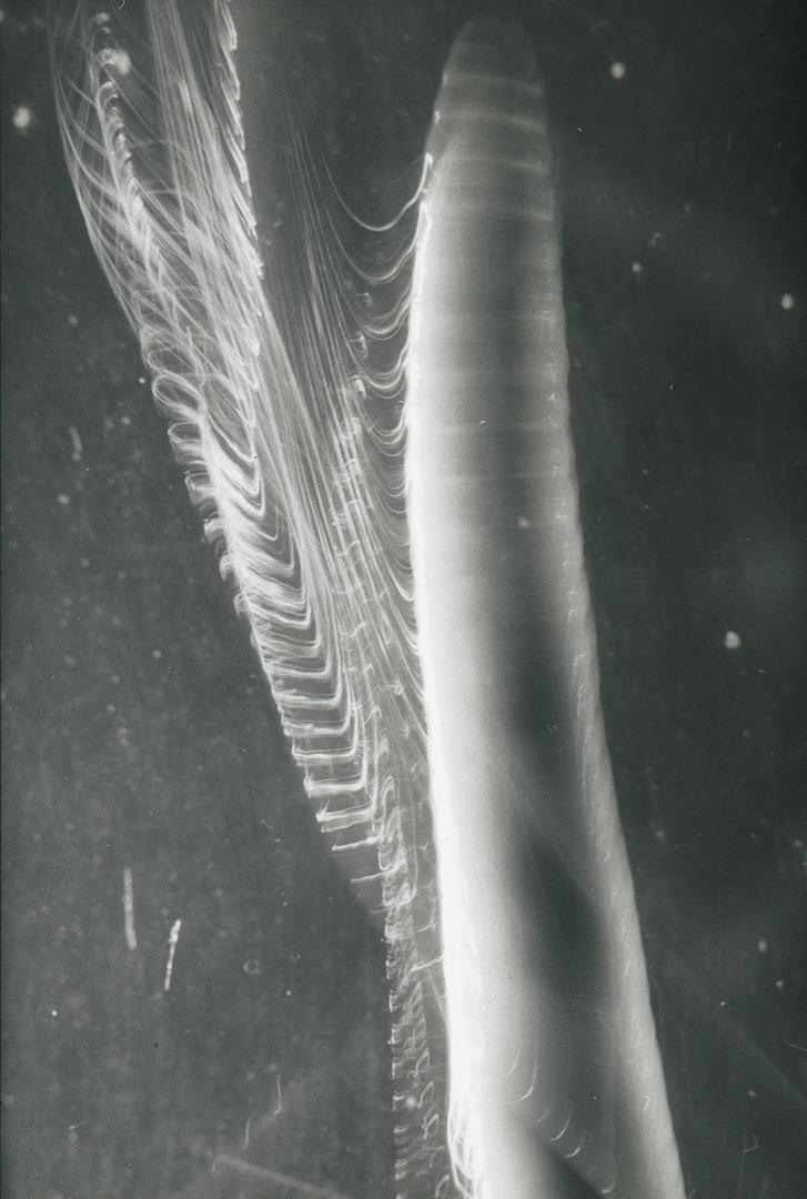 Regenwurm 3, 1987